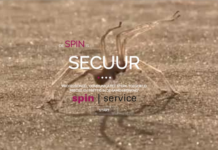 spinservice